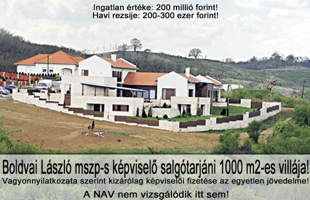 boldvai1-620x400